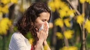 The Link Between Dry Eyes and Seasonal Allergies
