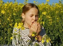 allergies and dry eyes